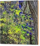 Autumn Blue  Wood Print
