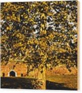 Autumn Boredom Wood Print