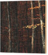 Autumn Branch Wood Print