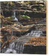 Autumn Brook Wood Print