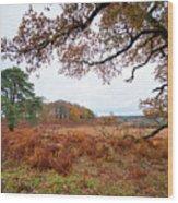 Autumn Brunch Wood Print