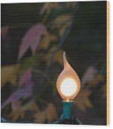 Autumn Bulb Wood Print