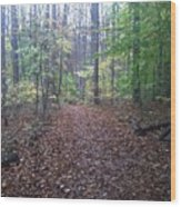 Autumn Calm Wood Print