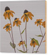 Autumn Card  Wood Print
