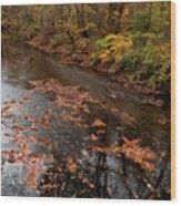 Autumn Carpet 003 Wood Print