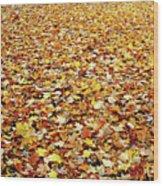 Autumn Carpet Wood Print