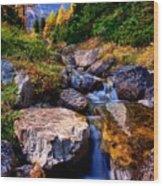 Autumn Cascade Wood Print