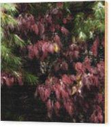 Autumn Chill Wood Print