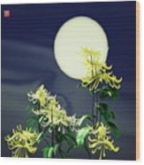 Autumn Chrysanthemums 2 Wood Print