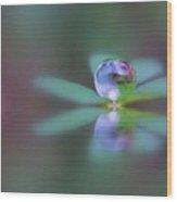 Autumn Clover Droplet Wood Print