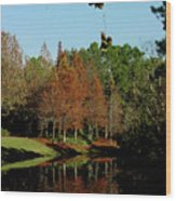 Autumn Color Reflected Wood Print