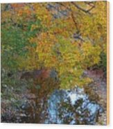 Autumn Colors Of Reflection Wood Print