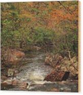 Autumn Colors On Pickle Creek 1 Wood Print