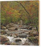 Autumn Colors On Pickle Creek 2 Wood Print
