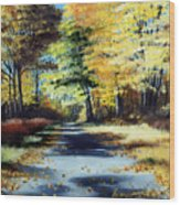 Autumn Colors Wood Print by Paul Walsh