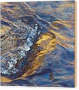 Autumn Colors River Rapids Wood Print