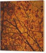 Autumn Colours Wood Print