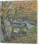 Autumn Comes To The Unami Creek Wood Print
