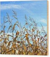 Autumn Corn Wood Print by Sandra Cunningham