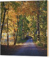 Autumn Country Lane Wood Print