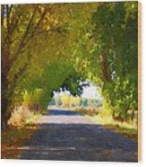 Autumn Country Lane Wood Print