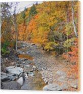 Autumn Creek 3 Wood Print