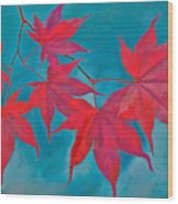 Autumn Crimson Wood Print by William Jobes