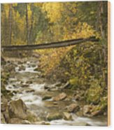 Autumn Crossing Wood Print