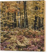 Autumn Dampness Wood Print