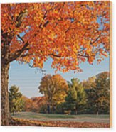 Autumn Dawn Wood Print