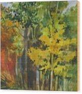 Autumn Day Wood Print