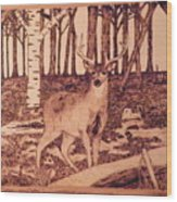 Autumn Deer Wood Print by Andrew Siecienski