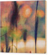 Autumn Dreams Abstract Wood Print