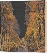 Autumn Drive 2 Wood Print