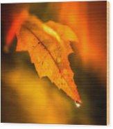 Autumn Drops Wood Print