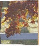 Autumn Elegance Wood Print