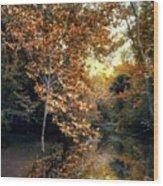 Autumn Enchantment Wood Print