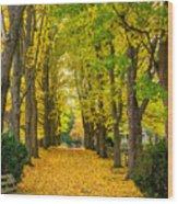 Autumn Entrance 2 Wood Print