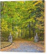 Autumn Entrance 3 Wood Print