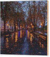 Promenade In Odessa Wood Print