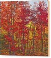 Autumn Experience Wood Print