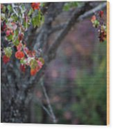 Autumn Fade Wood Print