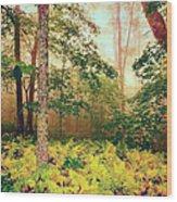 Autumn Fall Colors - Brilliant Ferns In The Blue Ridge Ap Wood Print