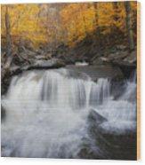 Autumn Falling Square Wood Print