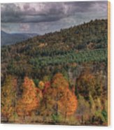 Autumn Fencerow Wood Print
