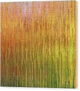 Autumn Fire Abstract Wood Print
