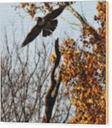 Autumn Flight Wood Print