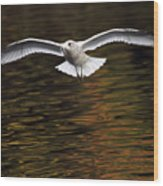 Autumn Flight Wood Print