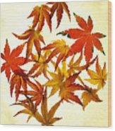 Autumn Flury Wood Print by Rebecca Cozart