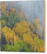 Autumn Fog And Snow Wood Print